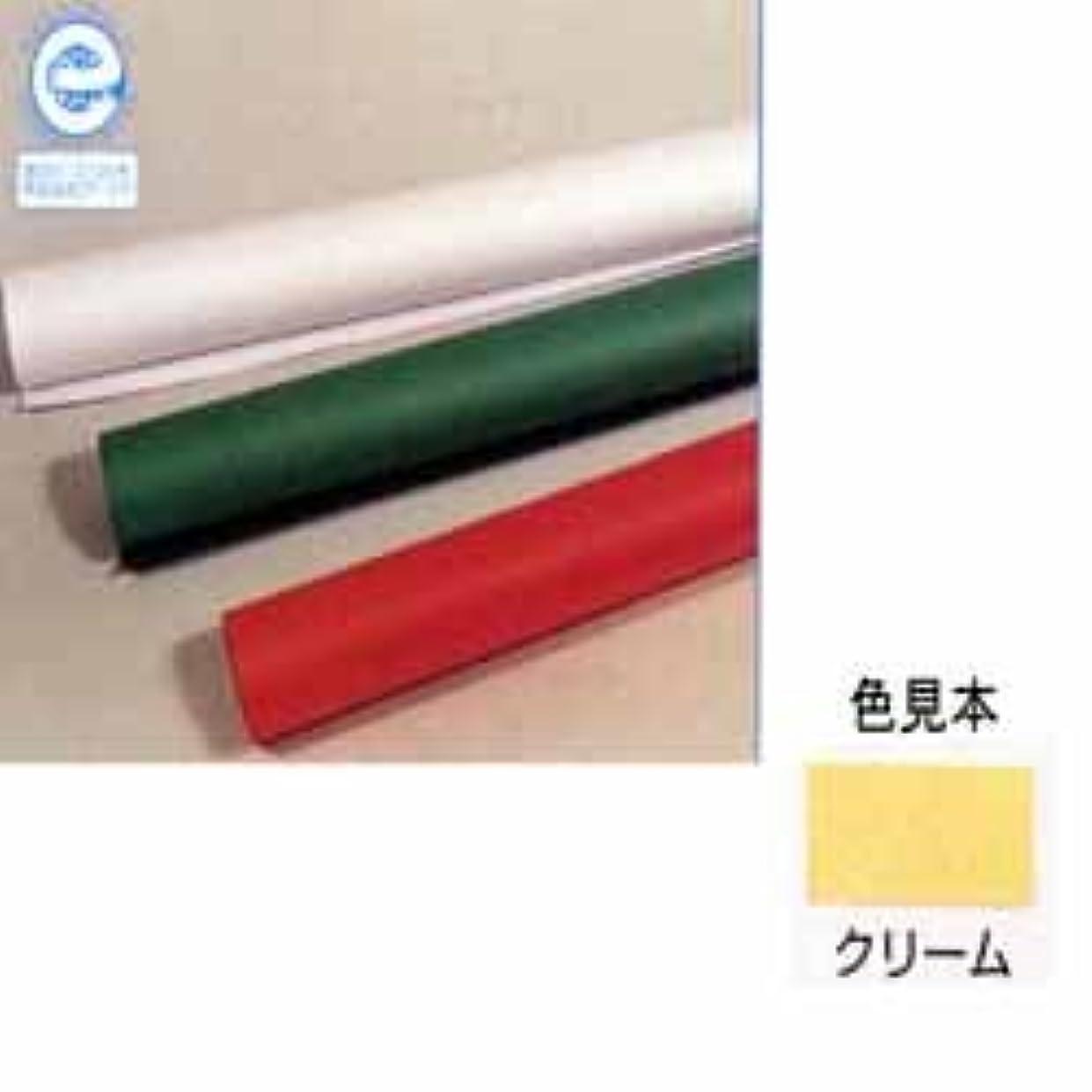 たくさん窒素少数ジャンボロールR 画用紙 ※クリーム (No.101)