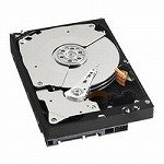 WESTERN DIGITAL 3.5インチ内蔵HDD 1TB Serial-ATA 7200rpm 32MB WD1001FALS