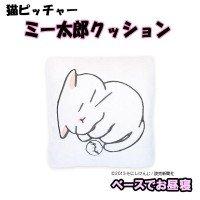 猫ピッチャー ミー太郎クッション ベースでお昼寝
