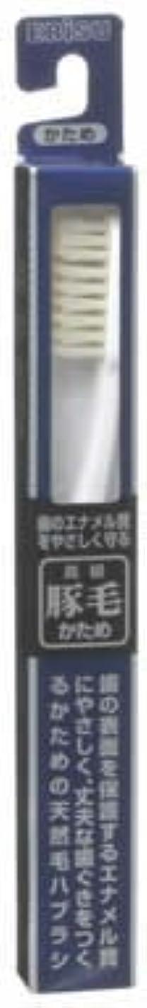 電気技師郵便セミナー豚毛ハブラシ B-T35 1本