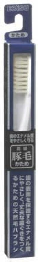 ビュッフェミキサー緊張豚毛ハブラシ B-T35 1本