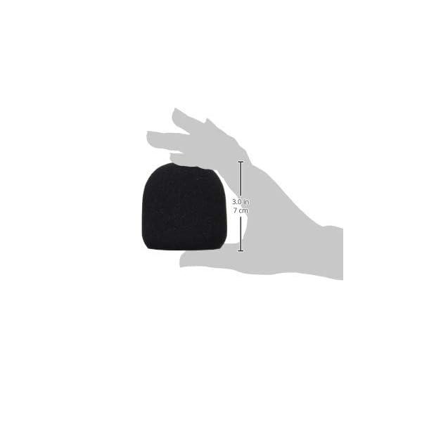 KC ウインドスクリーン ブラック WS-DM/BKの紹介画像3