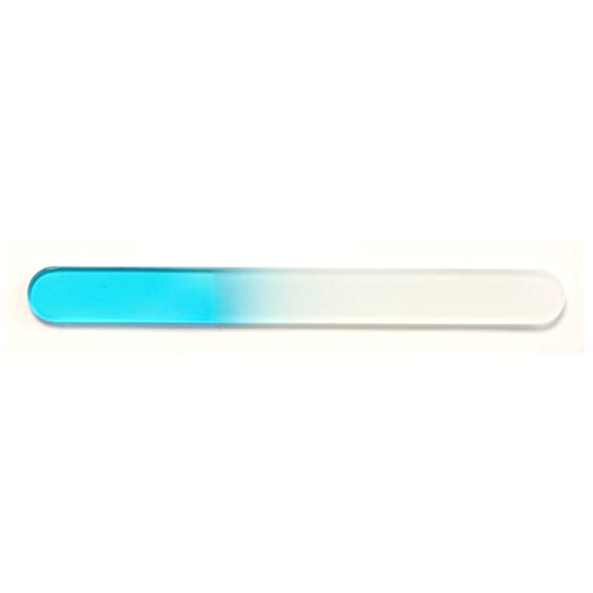 レイア環境に優しい放射性MY GEL(マイジェル) 29グラスファイル 大 ブルー