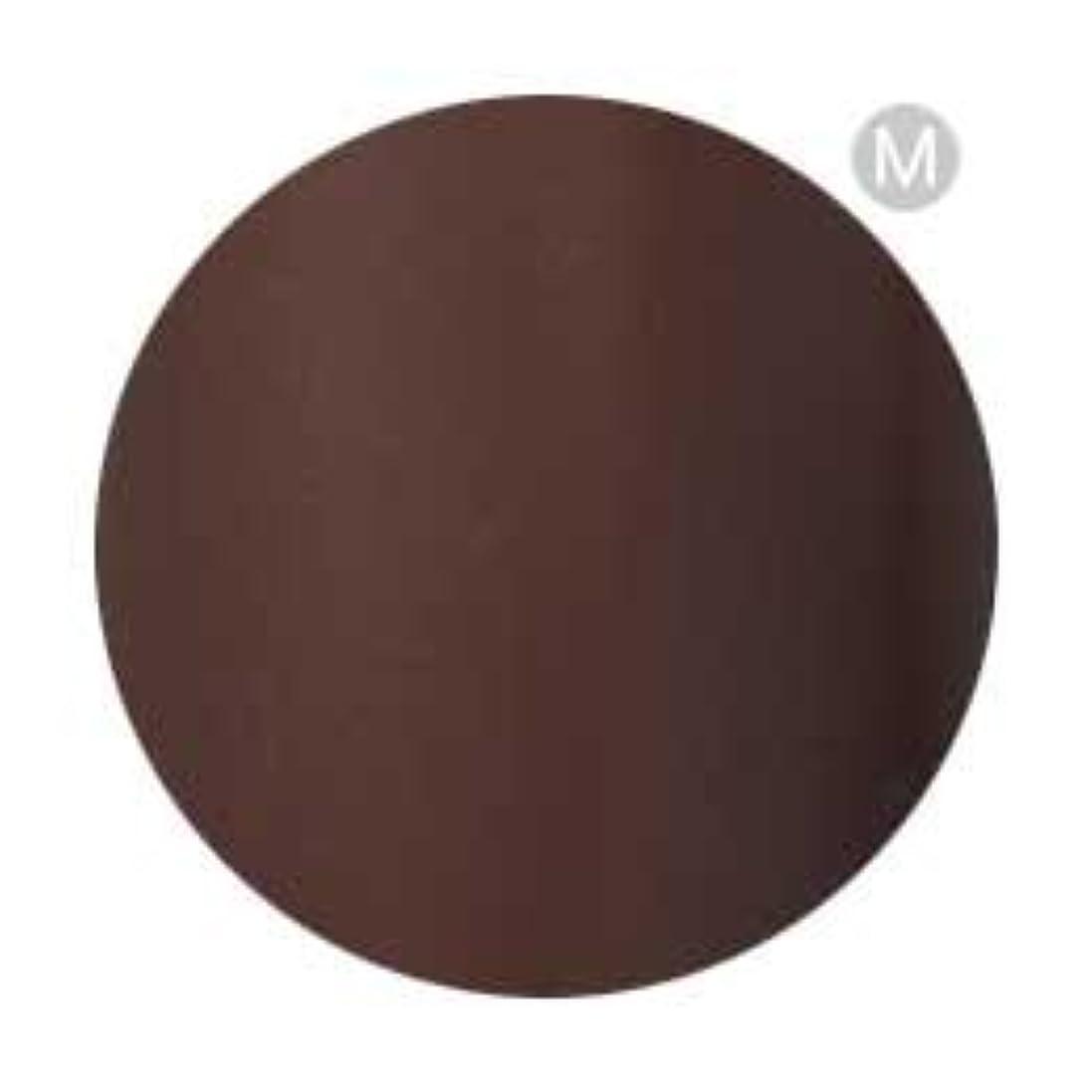 保険をかけるシミュレートする剪断Palms Graceful カラージェル 3g 050 チョコレート