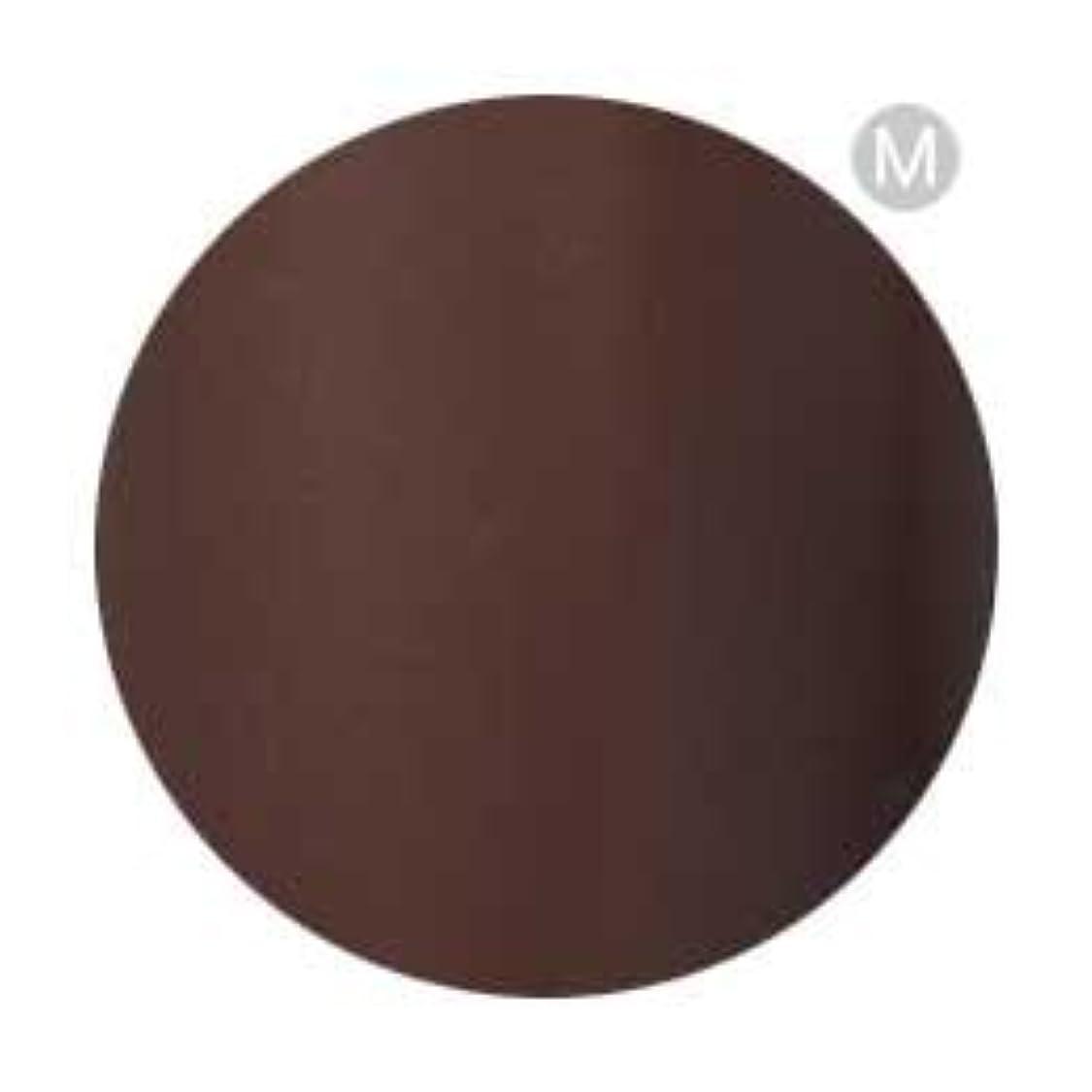 有彩色のクラウド真似るPalms Graceful カラージェル 3g 050 チョコレート