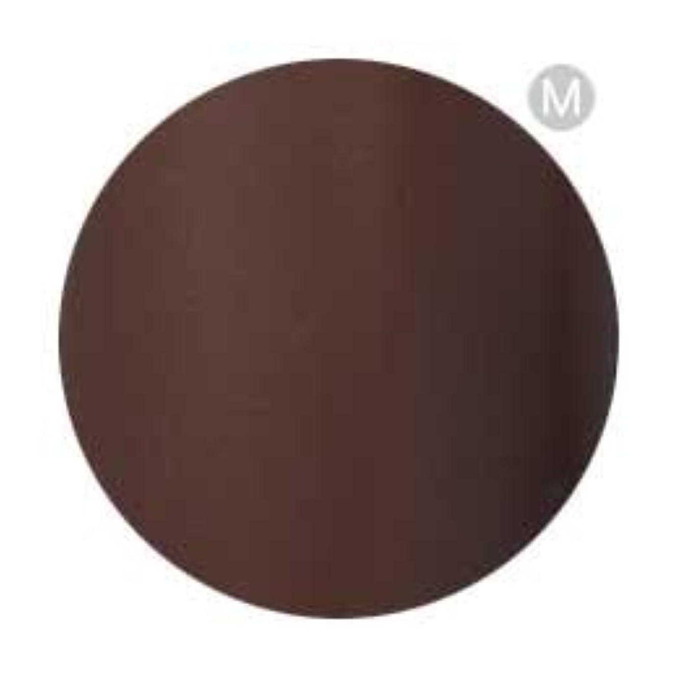 人間こしょう開業医Palms Graceful カラージェル 3g 050 チョコレート