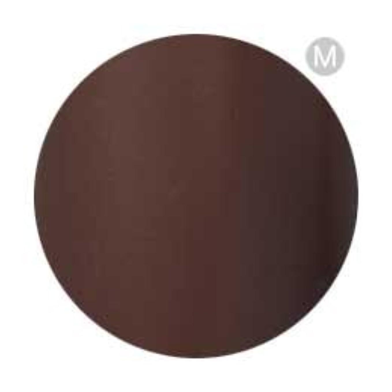 累積昇進に勝るPalms Graceful カラージェル 3g 050 チョコレート