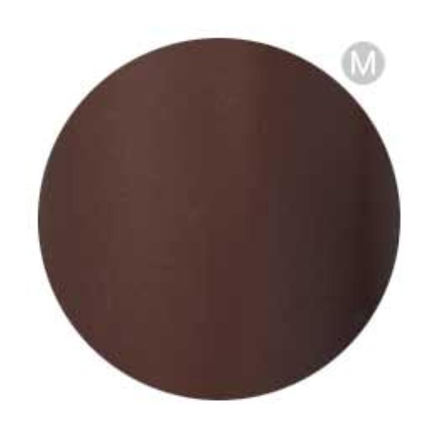 ビクターブロンズ祭りPalms Graceful カラージェル 3g 050 チョコレート