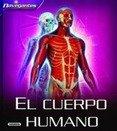 Preguntas y respuestas sobre el cuerpo humano