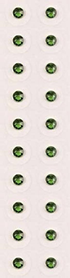 アサー粘液大学【ファーングリーン/ss12/セラミック粒】耳つぼジュエリー20粒【全50色】