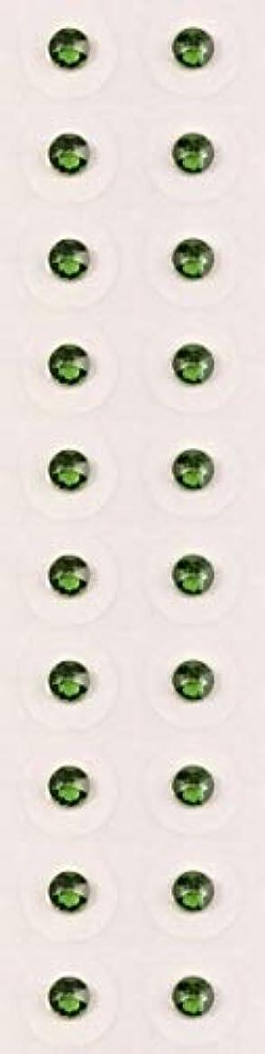 【ファーングリーン/ss12/セラミック粒】耳つぼジュエリー20粒【全50色】