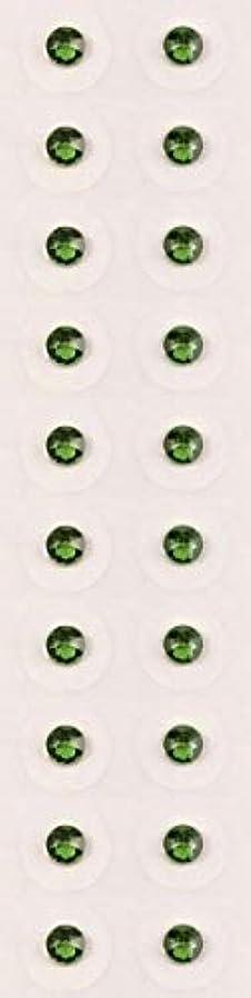 ラボパースブラックボロウグリップ【ファーングリーン/ss12/セラミック粒】耳つぼジュエリー20粒【全50色】