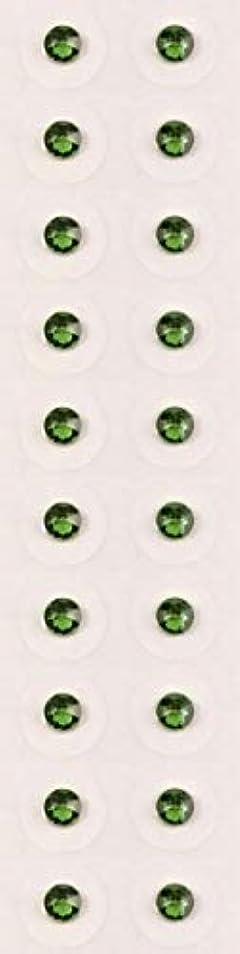 出発する同級生周術期【ファーングリーン/ss12/セラミック粒】耳つぼジュエリー20粒【全50色】