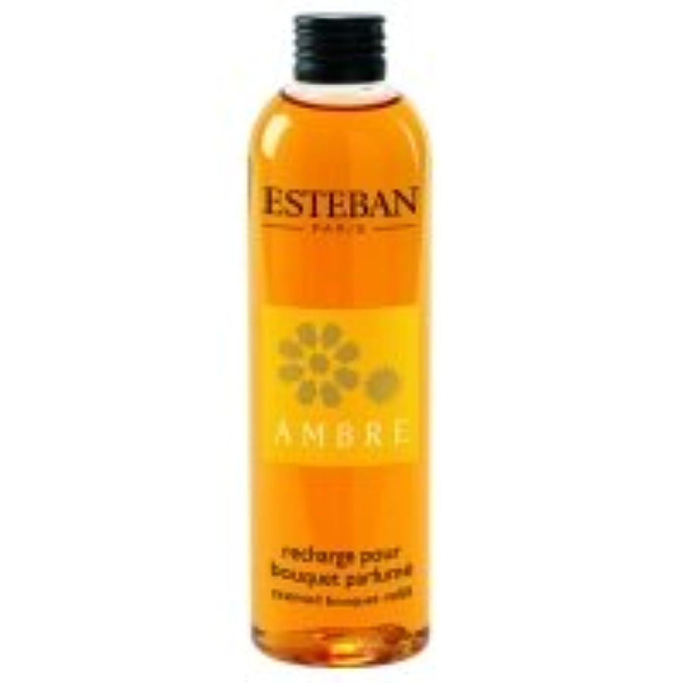 アセ大脳香水ESTEBAN フレグランスリフィル アンバー 250ml 1本