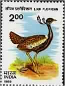 Likh Florican Bird, Lesser florican, Sypheotides indicus, Likh Rs. 2 Indian Stamp