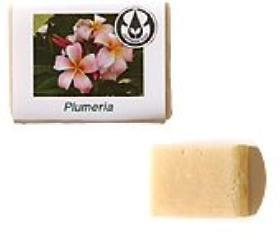 削除する豆腐かわいらしい生活の木 プルメリア 90g