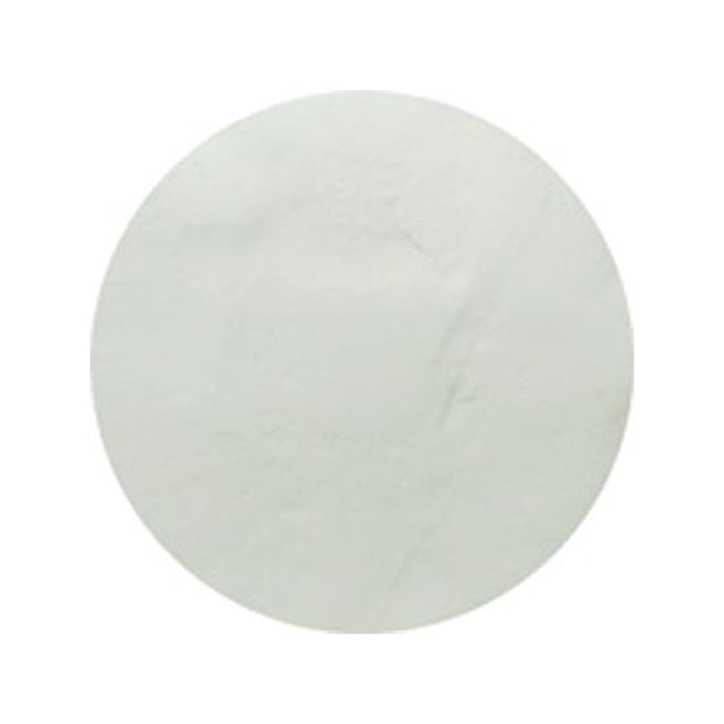 インセンティブ成功した乳ピカエース #700 着色顔料 スノーホワイト