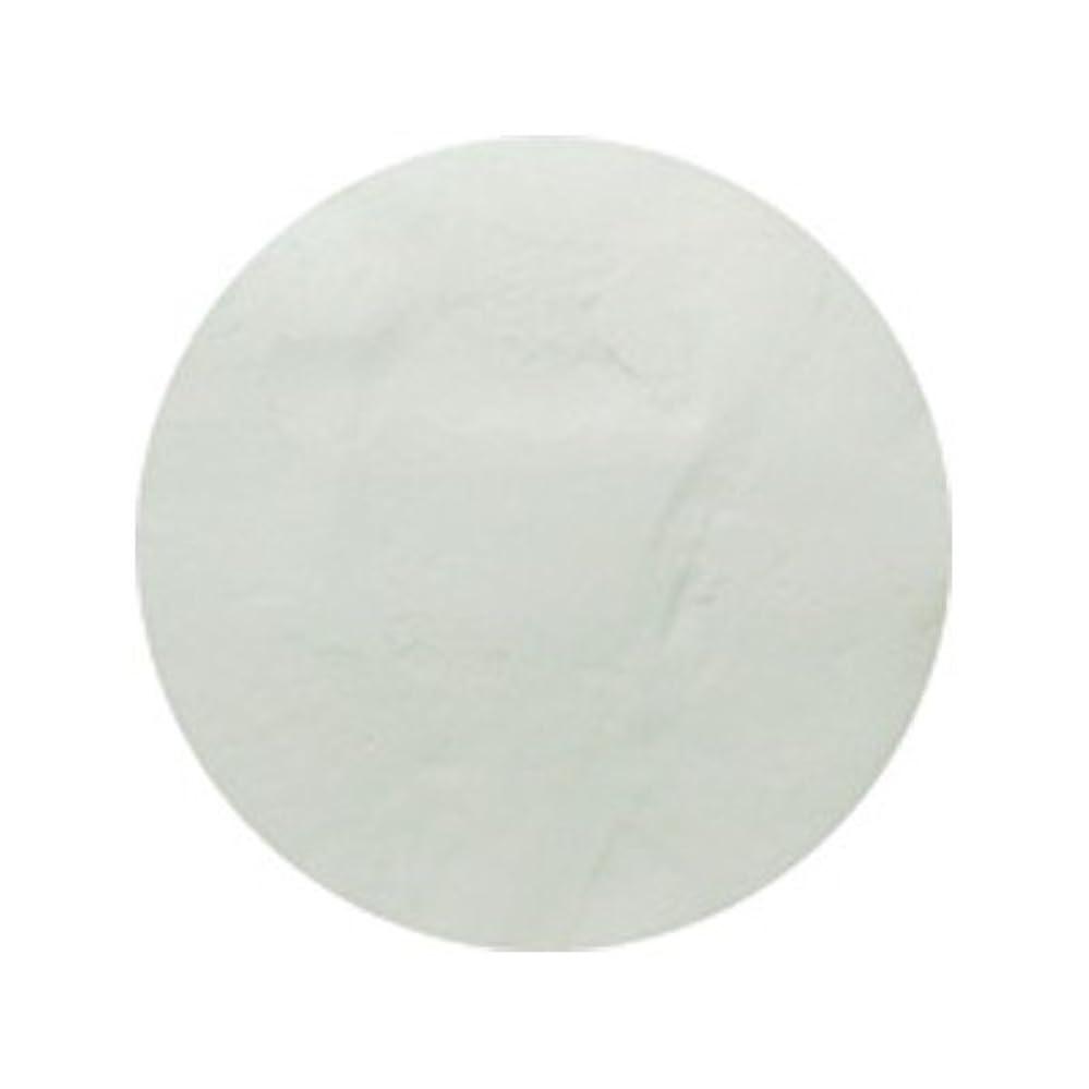 チャンバー輝くインデックスピカエース #700 着色顔料 スノーホワイト
