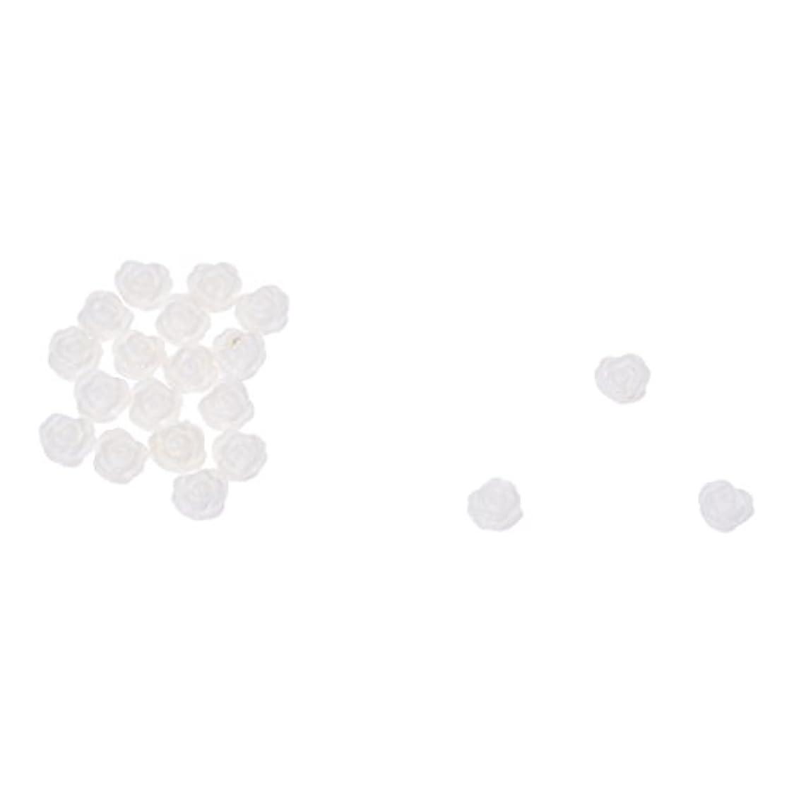 飛ぶ歯科の抵当ACAMPTAR ACAMPTAR(R)20×アクリル 3D 白い花 スライスネイルアートヒント UVジェル DIYデコレーション