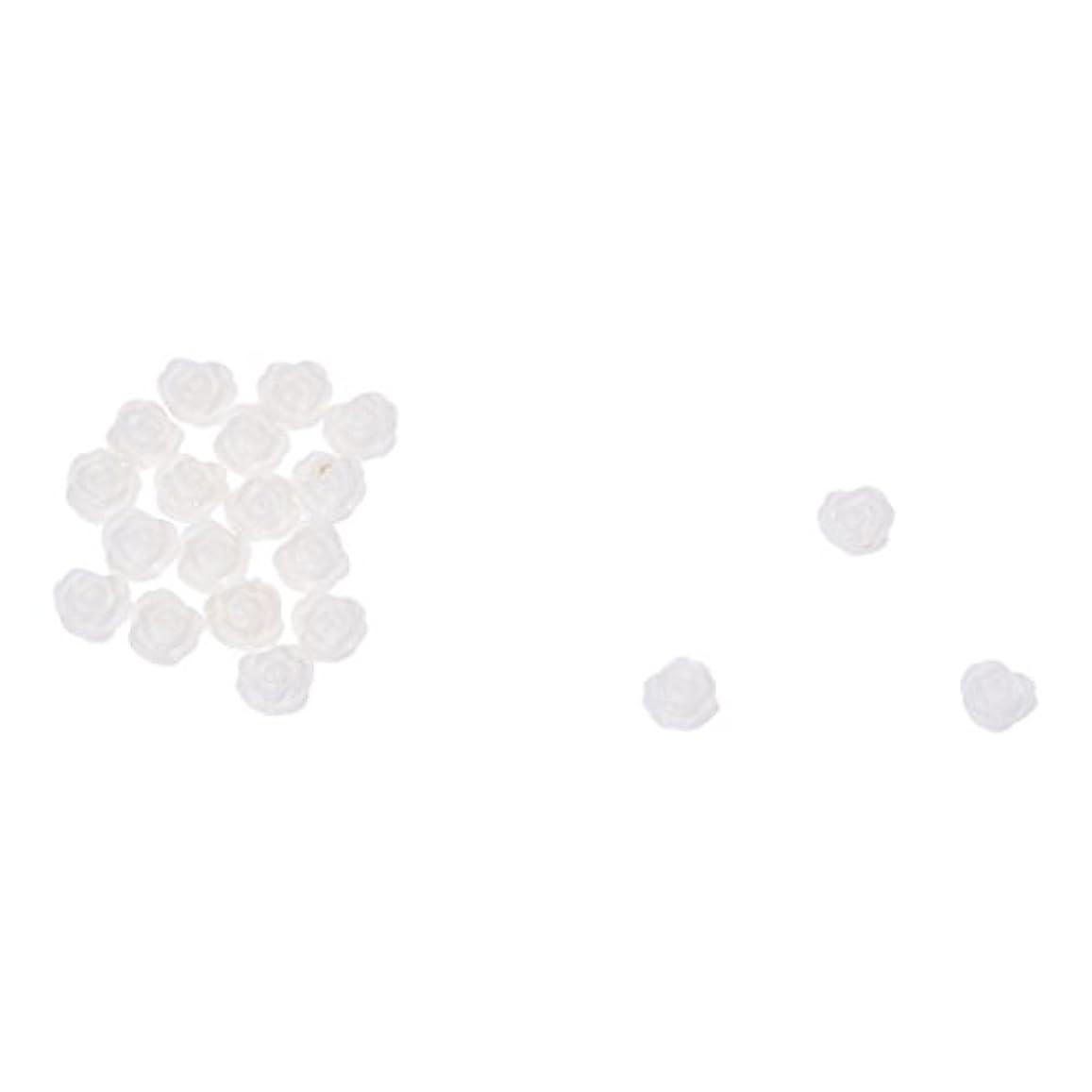 ボランティア活気づく最適ACAMPTAR ACAMPTAR(R)20×アクリル 3D 白い花 スライスネイルアートヒント UVジェル DIYデコレーション