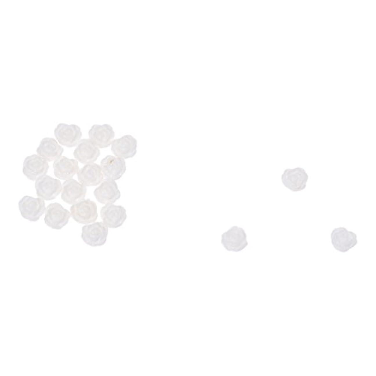 愛するチロ達成するACAMPTAR ACAMPTAR(R)20×アクリル 3D 白い花 スライスネイルアートヒント UVジェル DIYデコレーション