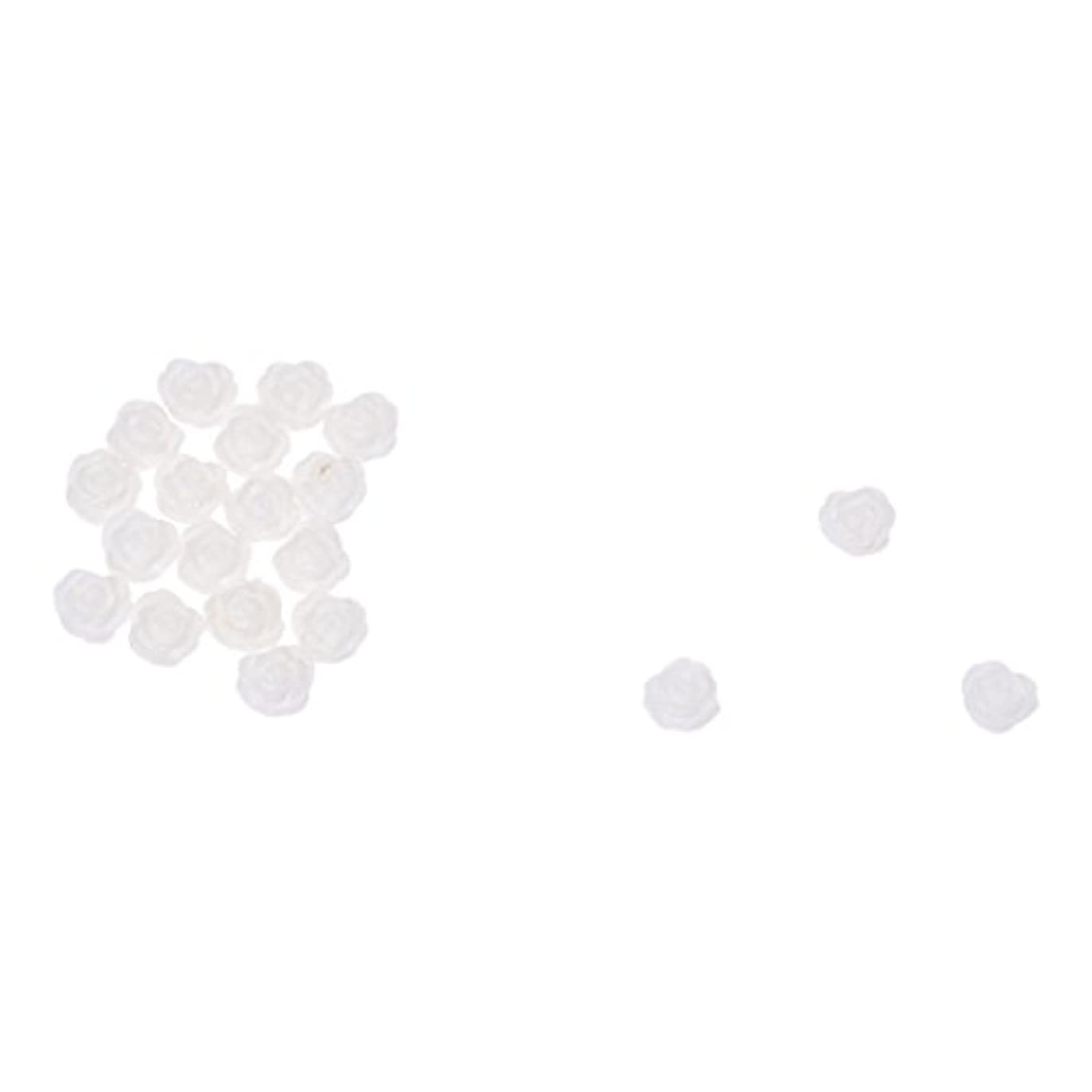 おじいちゃん最大化する後方ACAMPTAR ACAMPTAR(R)20×アクリル 3D 白い花 スライスネイルアートヒント UVジェル DIYデコレーション