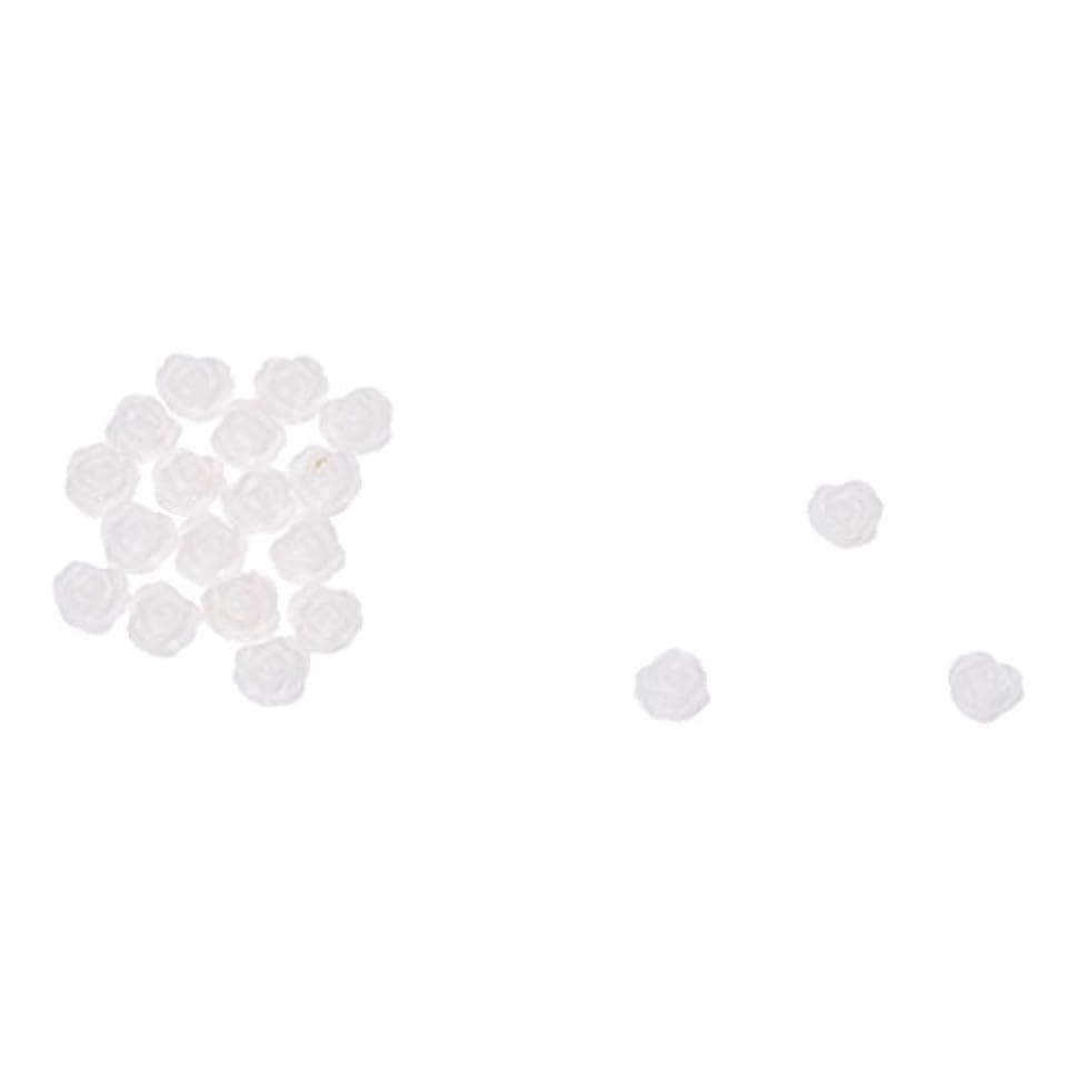 砂利リマ砲撃ACAMPTAR ACAMPTAR(R)20×アクリル 3D 白い花 スライスネイルアートヒント UVジェル DIYデコレーション