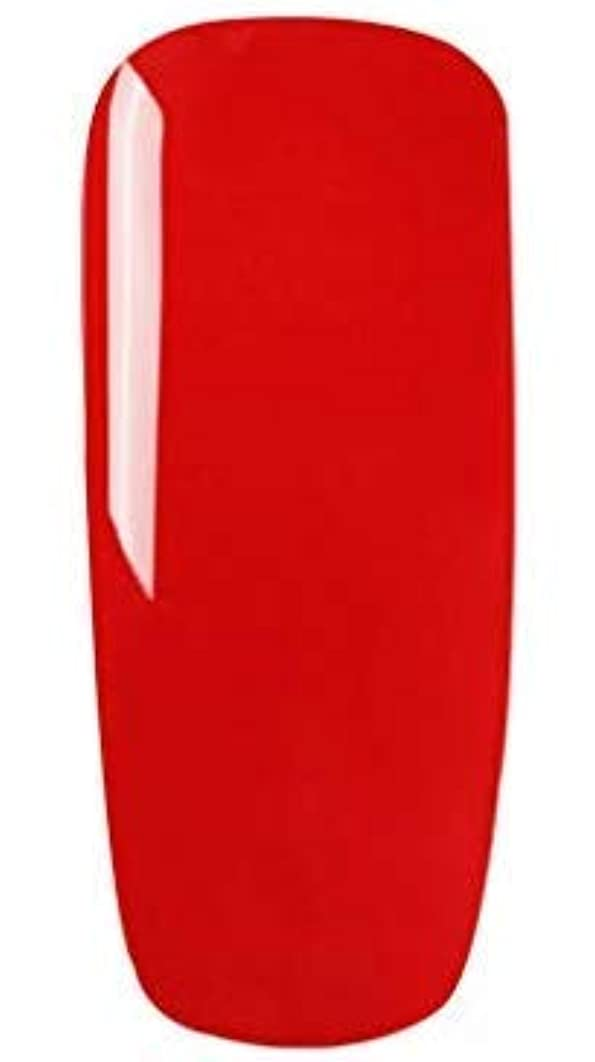 嬉しいです残高麻痺させるカラージェル 10色套装 完璧なセット 8ml キャットアイジェルキット カメレオンカラージェルセット ジェルネイルカラー UV/LED 适用 ネイルアートジェルで簡単に DIY 下の色で10ボトルを自由に選ぶことができる