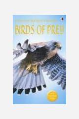 Birds Of Prey Paperback