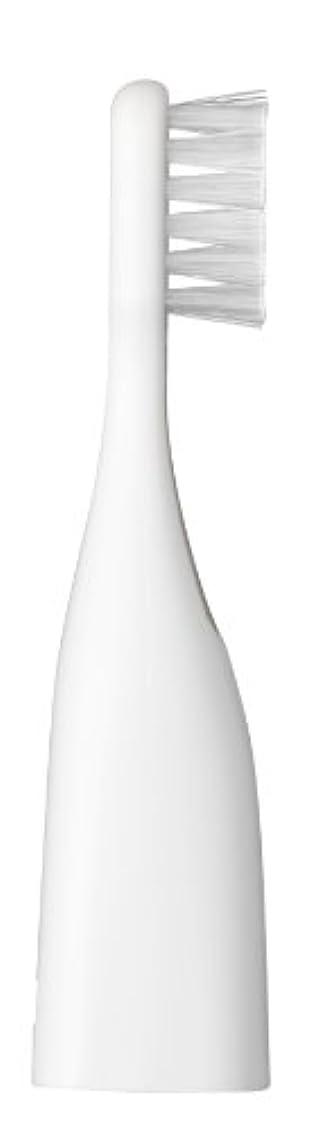 アンデス山脈逃す旅行パナソニック ポケットドルツキッズEW-DS32用替えブラシ 2本入 白 EW0959-W