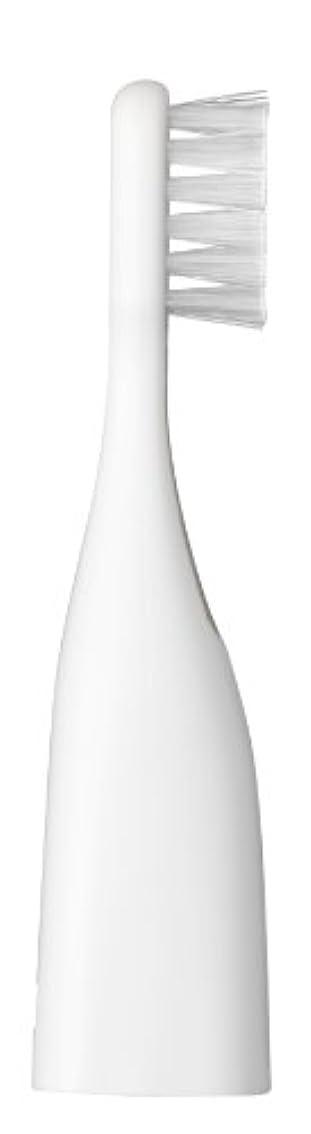 美徳啓示ローラーパナソニック ポケットドルツキッズEW-DS32用替えブラシ 2本入 白 EW0959-W