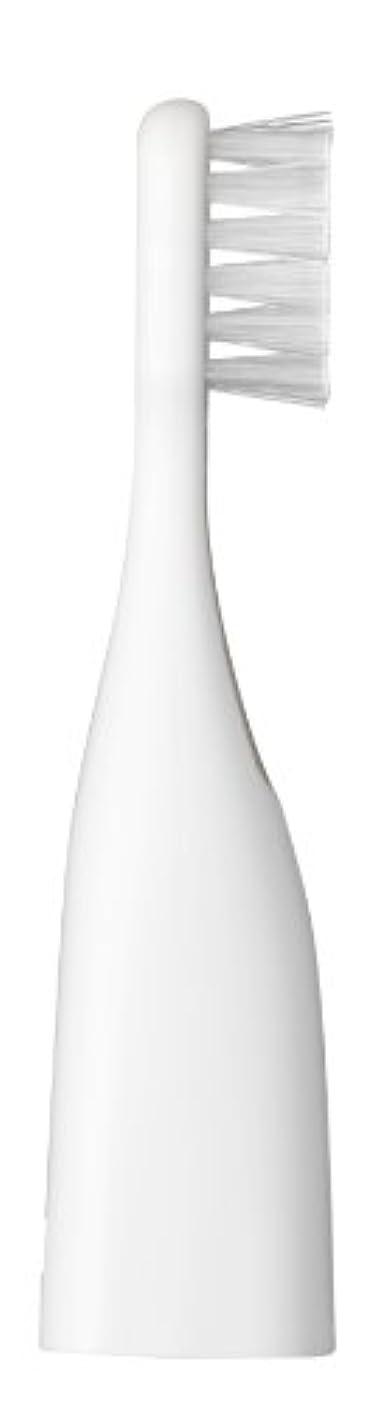 カヌー祝福ビデオパナソニック ポケットドルツキッズEW-DS32用替えブラシ 2本入 白 EW0959-W