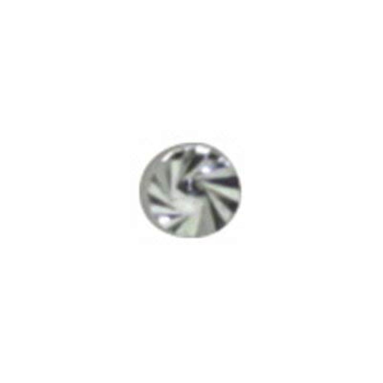首青写真縮約SHAREYDVA ネイルパーツ サンシャインスタッズ シルバー 1.8mm 20P