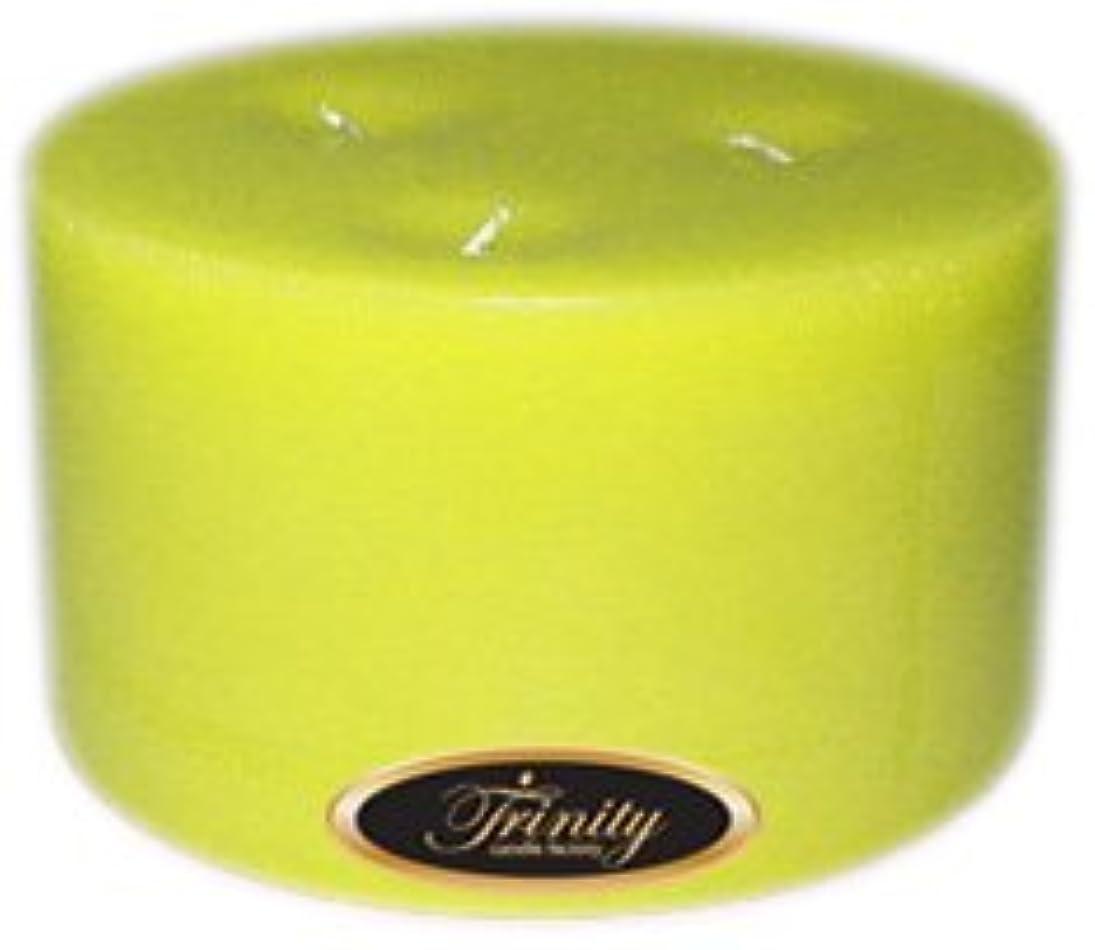 体系的に宝石制限Trinity Candle工場 – レモングラス – Pillar Candle – 6 x 3