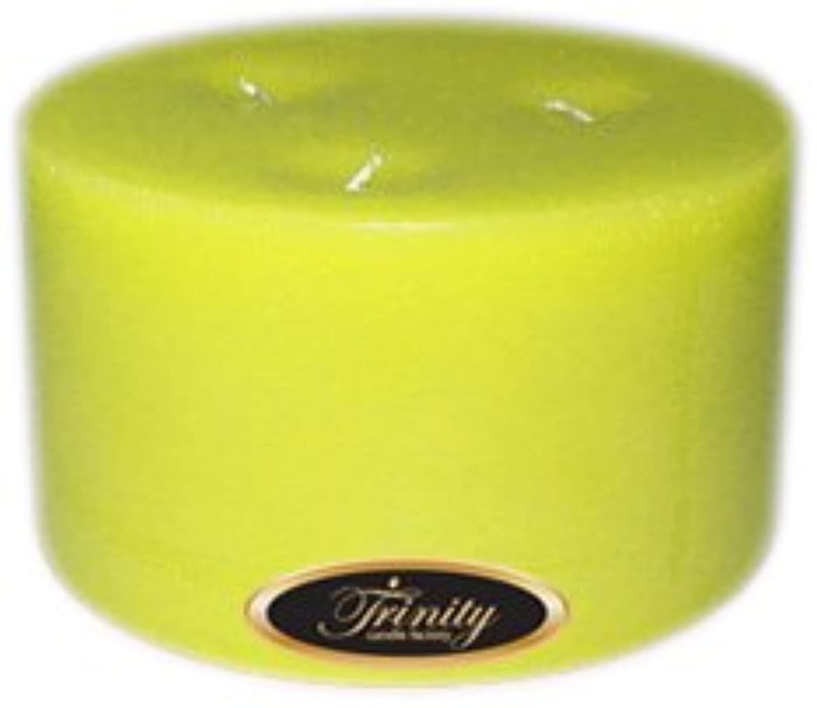 体操選手引く絶望Trinity Candle工場 – レモングラス – Pillar Candle – 6 x 3