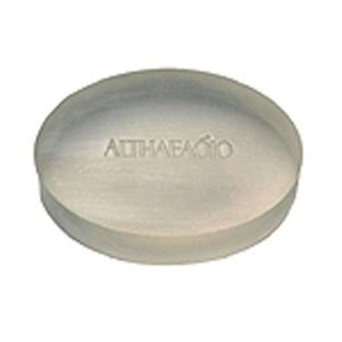 ペレグリネーションヒープ練るセプテム エルテオ ソープ レフィル 100g 薬用洗顔石けん