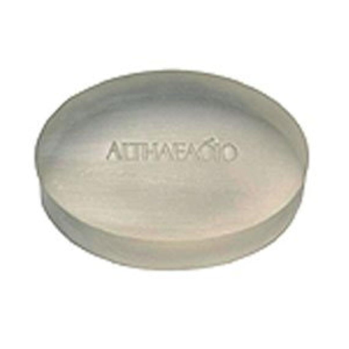 人工ワイドレッスンセプテム エルテオ ソープ レフィル 100g 薬用洗顔石けん