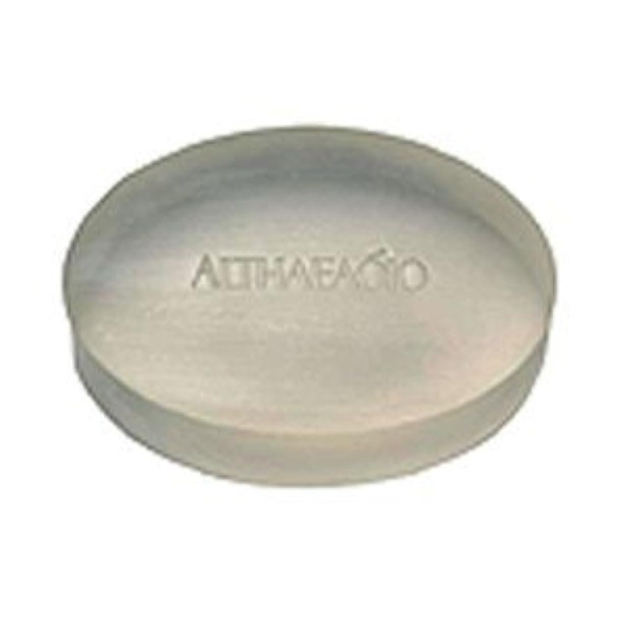 報復する素敵なオーガニックセプテム エルテオ ソープ レフィル 100g 薬用洗顔石けん