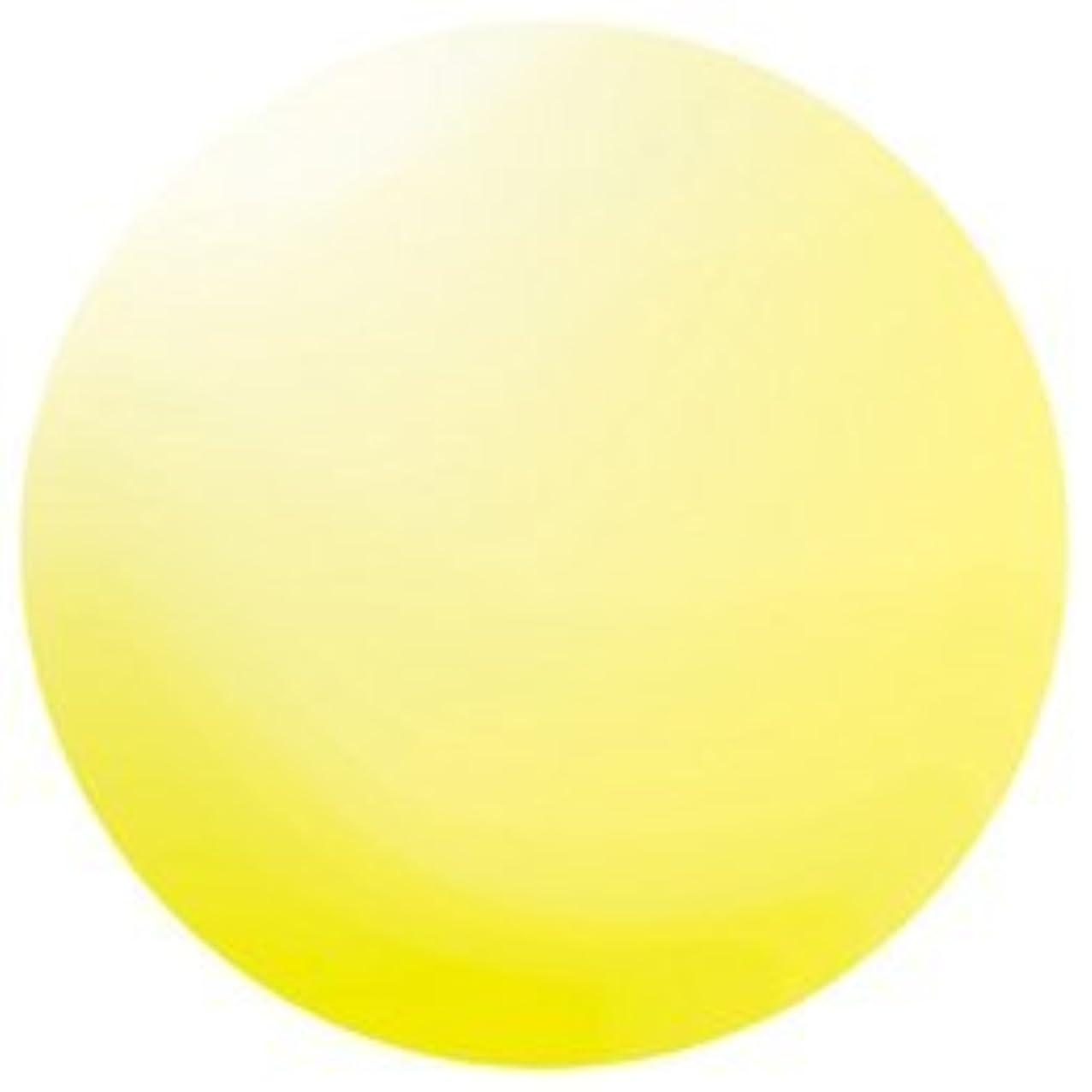 不健全麻酔薬嵐のKOKOIST カラージェル E-137 4g カナリーイエロービーチグラス