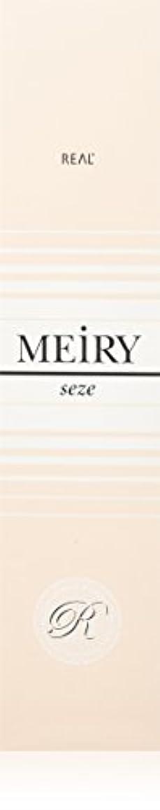 呼びかける序文石のメイリー セゼ(MEiRY seze) ヘアカラー 1剤 90g 4NB
