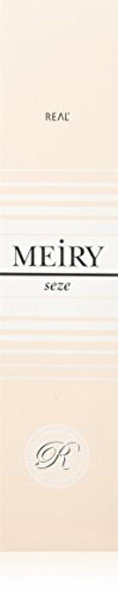 経度テクスチャーメイリー セゼ(MEiRY seze) ヘアカラー 1剤 90g 4NB