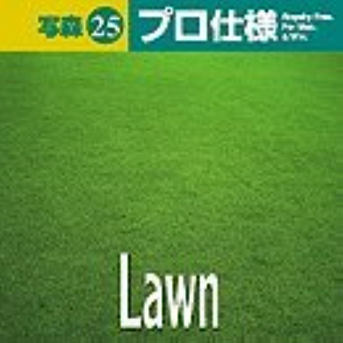 無法者数学フットボール写森プロ仕様 Vol.25 Lawn