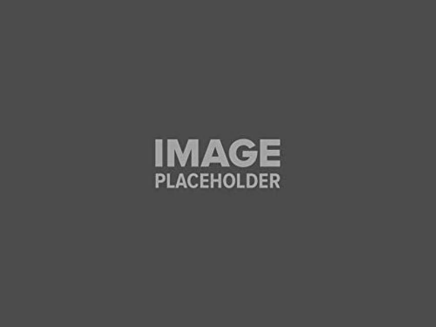 卵退化する応援するBooyah BYSQ38734 スクイーラーベイト シルバーホワイト