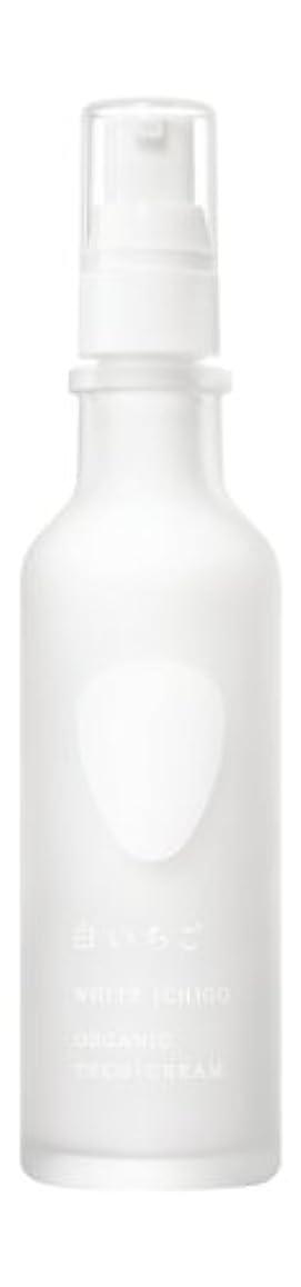 ホット辞任ネクタイWHITE ICHIGO(ホワイトイチゴ) オーガニック テック-クリーム 60g