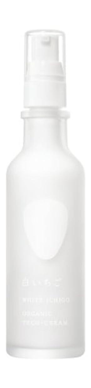 時期尚早店員ホバートWHITE ICHIGO(ホワイトイチゴ) オーガニック テック-クリーム 60g