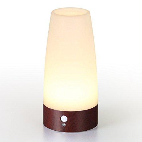 Lifeholder LEDライト 人感&明暗センサーライト...