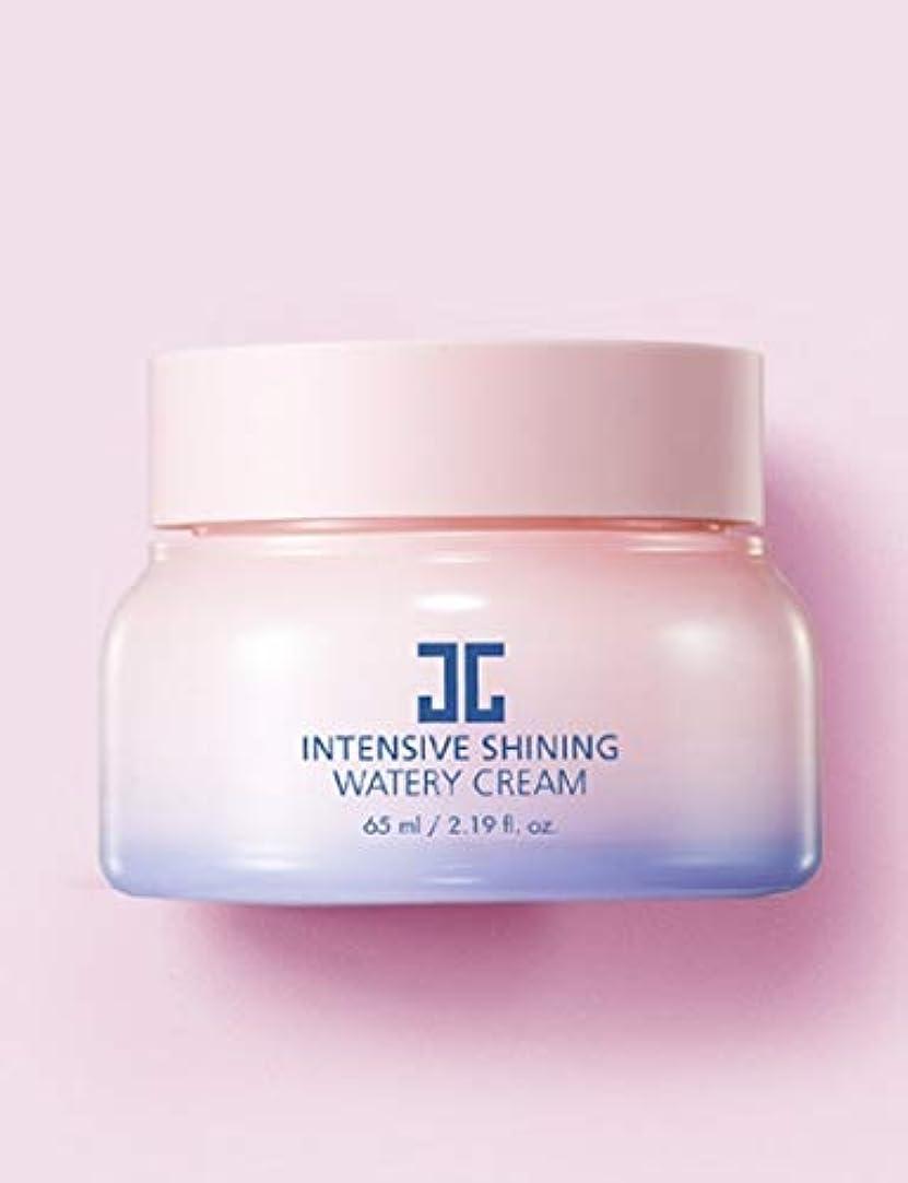 マルクス主義者法廷幸運なJAYJUNジェイジュンインテンシブシャイニングウォータークリーム65ml 韓国の有名化粧品ブランドの人気水分クリームスキンケア鎮静保湿効果