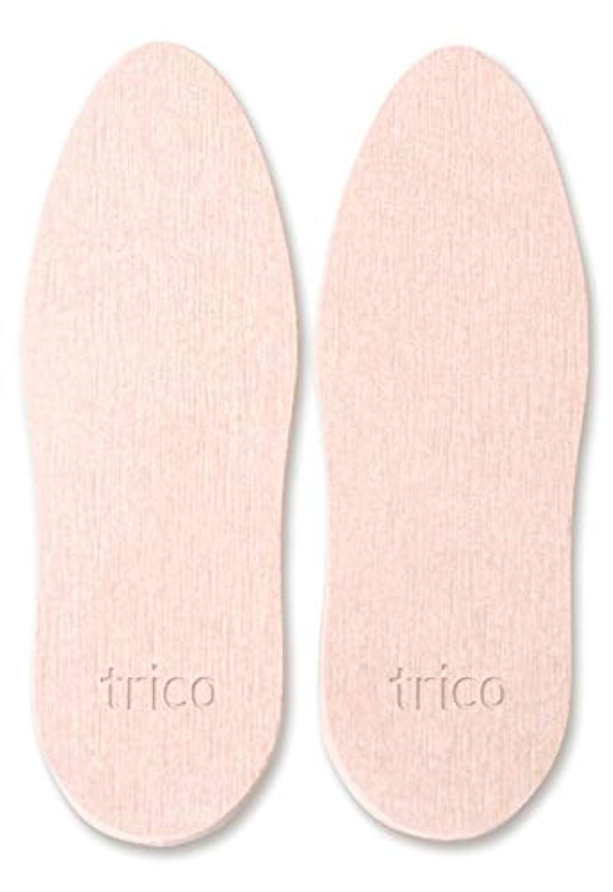 うまれた艶床を掃除するtrico 靴の消臭 珪藻土 シューズドライプレート ピンク CTZ-18-03