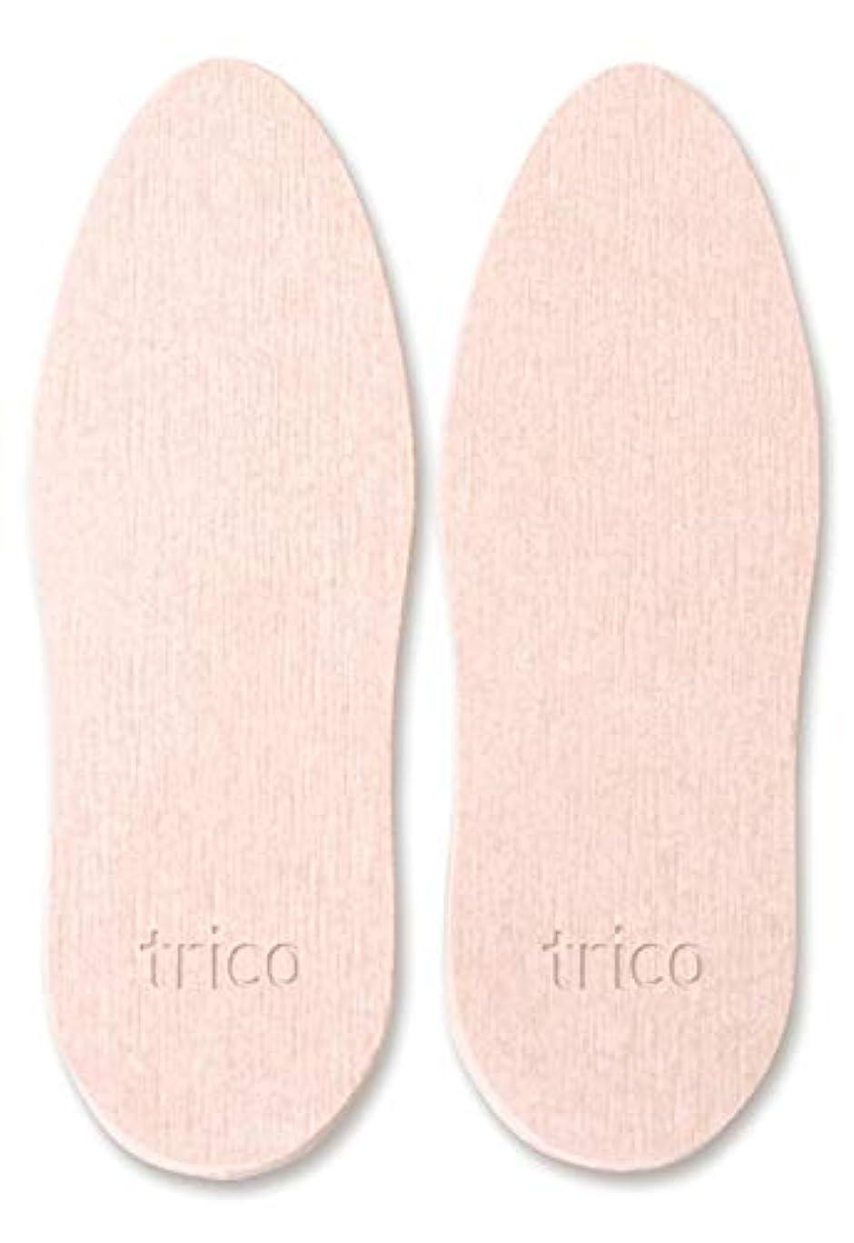 ベーシック十分な修羅場trico 靴の消臭 珪藻土 シューズドライプレート ピンク CTZ-18-03