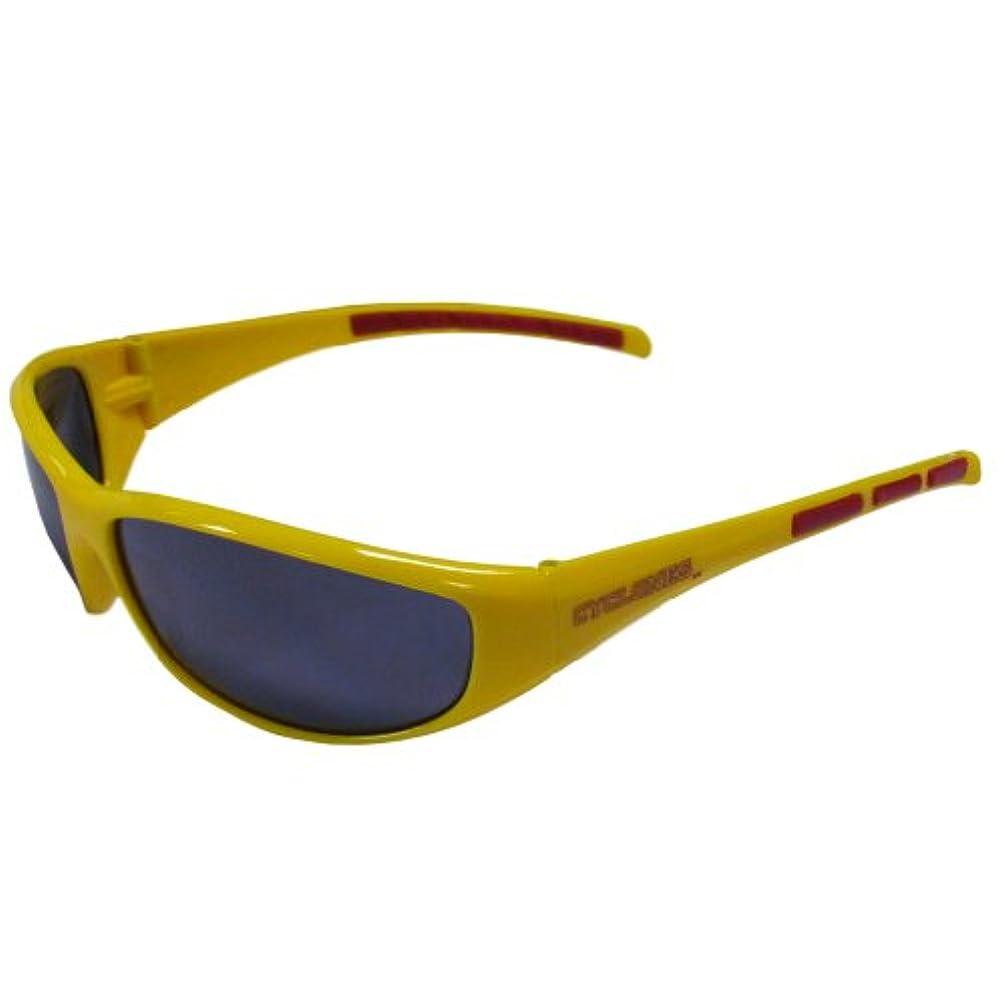 降臨打ち上げる空白Siskiyou Sports 2CSG83 Iowa St. Wrap Sunglasses